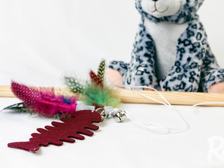 Dangly Cat Toy