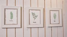 Framed Herbal Art.jpg