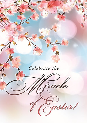 EASTER BOXED CARDS - THE MIRACLE OF EASTER