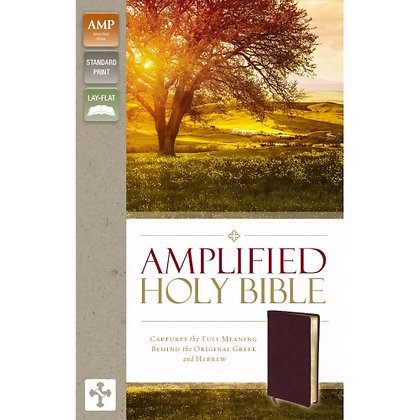 AMPLIFIED HOLY BIBLE, BLACK BONDED LEATHER ZONDERVAN
