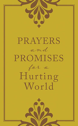 Prayers and Promises for a Hurting World  Laura Freudig
