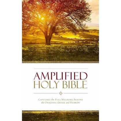 AMPLIFIED HOLY BIBLE ZONDERVAN