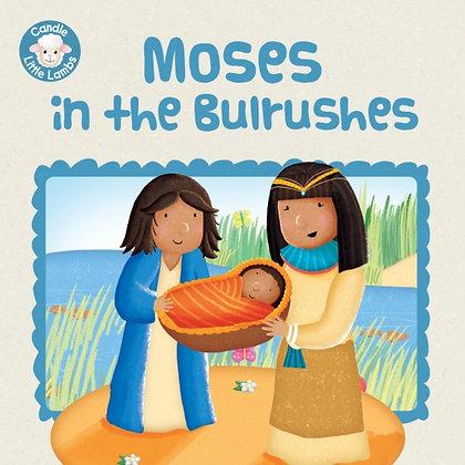 Moses in the Bulrushes Karen Williamson,Sarah Conner