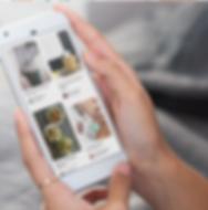Grow your Followers on Pinterest