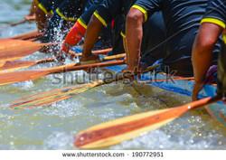 stock-photo--rowing-team-190772951.jpg