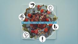 식약처 식품알레르기 예방