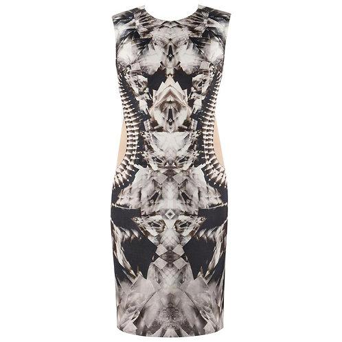 Alexander McQueen Iconic Skeleton Dress