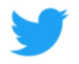 Twitter Logo300.png