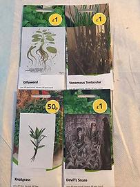 Herbology Seeds.JPG
