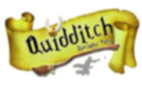 Quidditch Party.jpg
