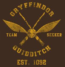 House Quidditch.jpg