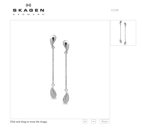 Skagen Steel Earrings
