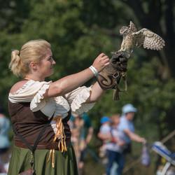 England's Medieval Festival Falconry