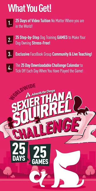 AD 25 Day Squirrel Challenge What you ge