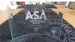 ASA Award 2018.jpg