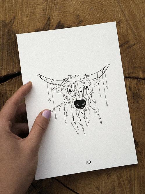 Kunstdruck HIGHLAND COW