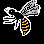wasps fc logo-01.png