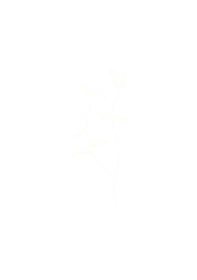 PLANTE_CONTACT_1b-06.png