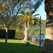 Le Palme Vista Lago