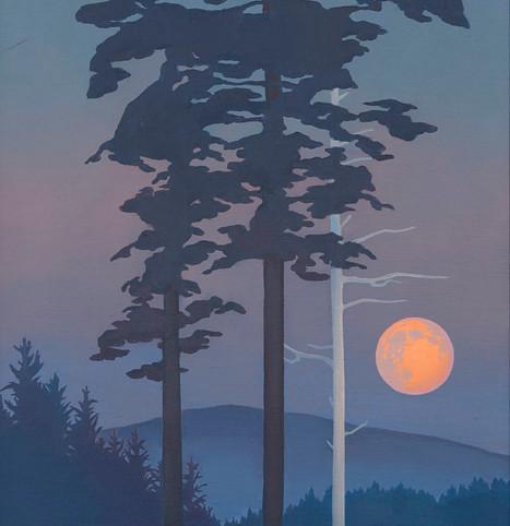 Toisinko sinulle kuun taivaalta