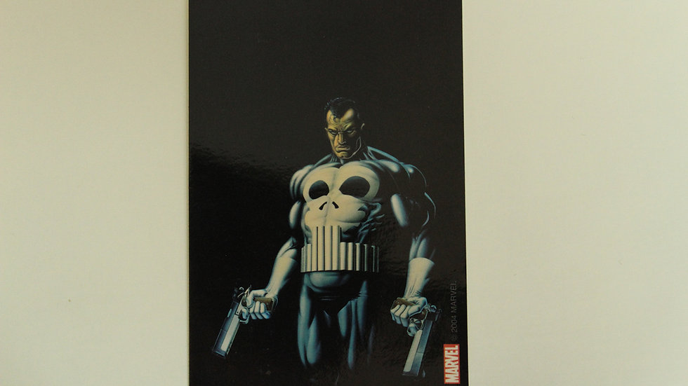 PUNISHER GUNS STICKER