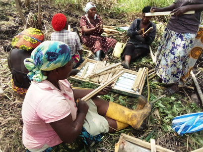 First Apiary for Mrs. Honey Bee Group in Uganda