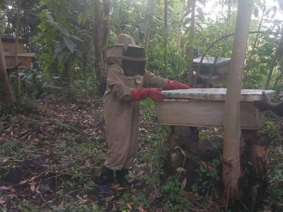 Meet Muhindo - Dynamic Young Beekeeper