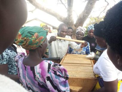 Dowa Women Beekeeping Project - Malawi