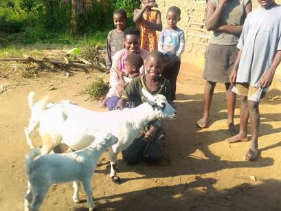 Meet Eva - Bees And Goats