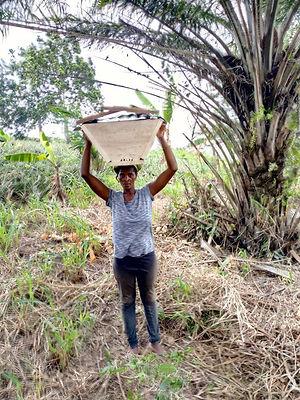 7) Levite-beekeeper.jpg