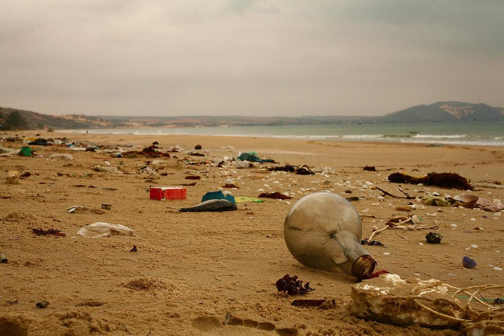beach-4914403.jpg