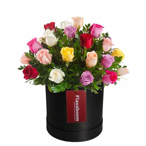 Romina, rosas PREMIUM en variados colores