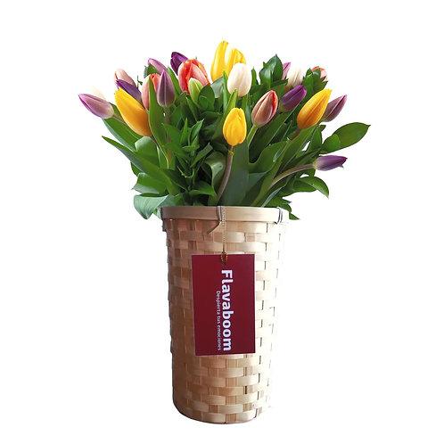 Base de Mimbre con 20 tulipanes
