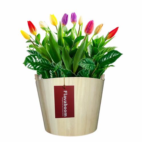 Base de madera con tulipanes PREMIUM en colores variados