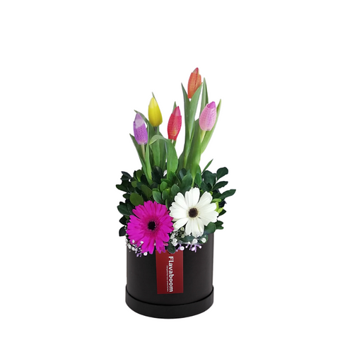 Sombrerera negra con 5 tulipanes y 2 gerberas