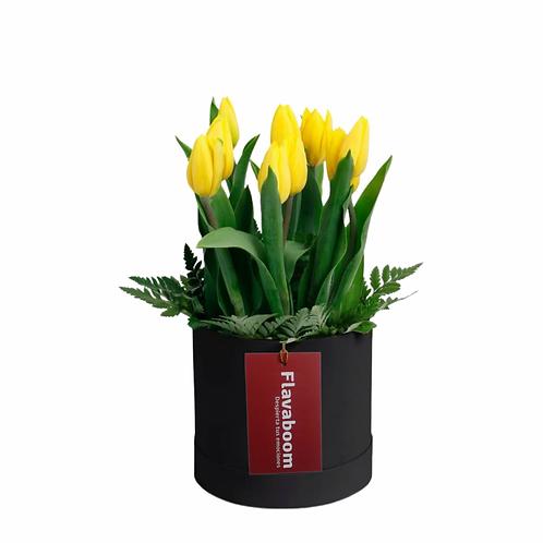 Sombrerera pequeña con 9 tulipanes amarillos