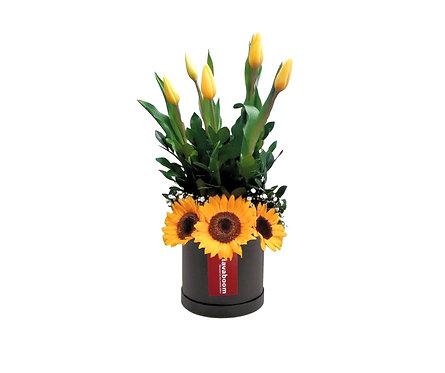 Sombrerera con 5 Tulipanes amarillos, 3 Girasoles y verdes selectos
