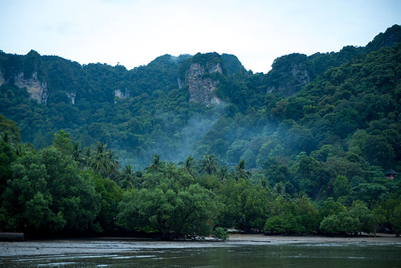 Thailand 64 (1 of 1) (1).jpg