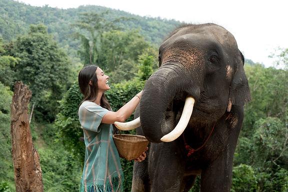 Thailand 45 (1 of 1).jpg