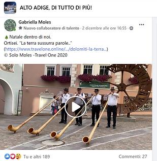 ALTO ADIGE DI TTO.png