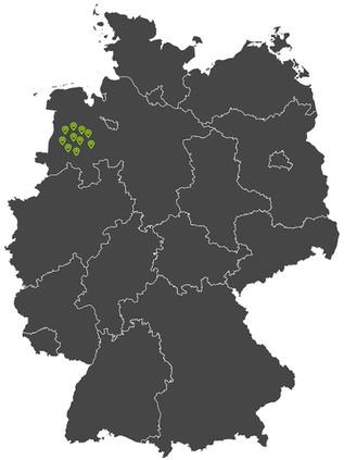Umzugsunternehmen Standorte