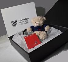 caixa preta urso.jpg