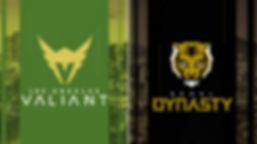 owl_Valiant_Style01_HeadtoHead_frame06-1
