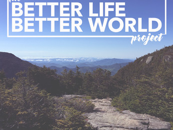 The Better Life Better World Project