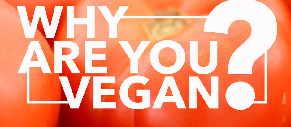 Why Are You Vegan?