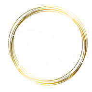Perfect_Plan-Logo_final_white.png