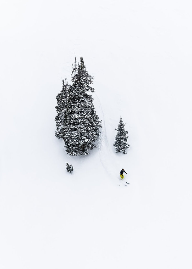 Professional Skier Kelli Spencer skiing between the trees in Little Cottonwood Canyon, Utah