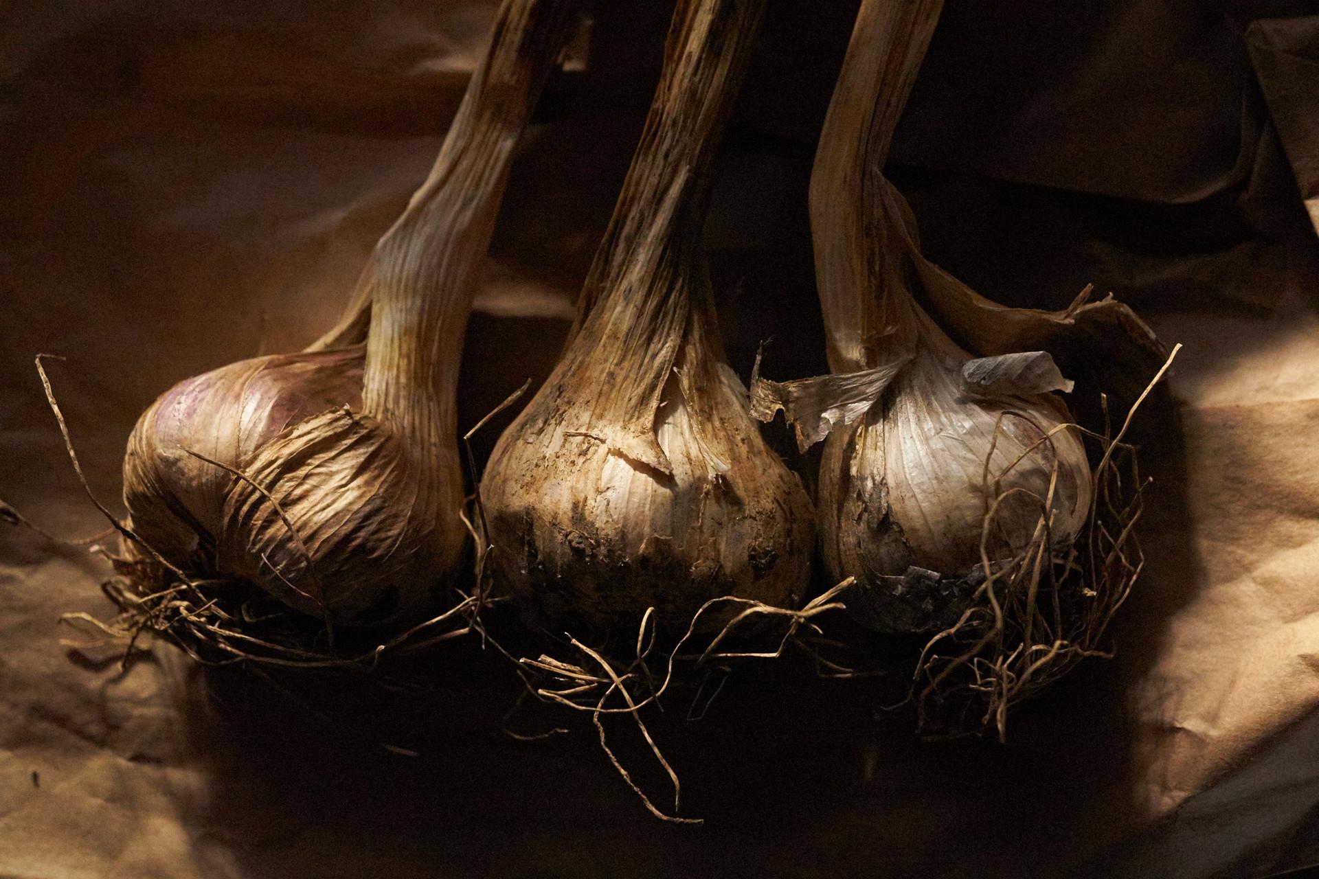 6.14.16_Promo_Garlic__DSC3556.jpg
