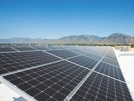 Malouf greatly expands solar energy investment