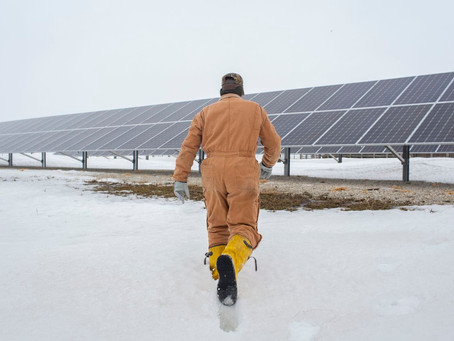 The next money crop for farmers: Solar panels